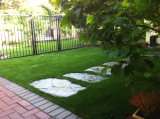 Paesaggio con il prato inglese senz'acqua dell'erba artificiale