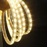 Bande décorative de la lumière SMD5050 DEL de la tension DEL comme lumière de Noël
