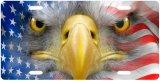 De Amerikaanse Patriottische Markering van de Auto van de Nieuwigheid van de Nummerplaat van de Vlag
