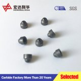 Puntas de carburo de tungsteno de Zhuzhou Lihua