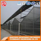 다중 경간 Venlo Prefabricated 폴리탄산염 꽃 온실