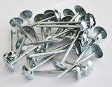 De uitstekende kwaliteit Gegalvaniseerde Spijkers van het Dakwerk met Verdraaide Steel