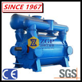 China-TitanEdelstahl-chemisches Wasser-flüssige Ring-Vakuumpumpe