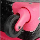 Equipaje caliente de la cabina de la reproducción del diseñador del precio de fábrica de la venta