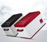 Mini congélateur de réfrigérateur de réfrigérateur de véhicule