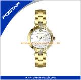 Coin charmant Diamond étanche Quartz montre-bracelet en acier inoxydable