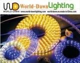 Lumière carrée de corde de la tension 110V/220V de la CE SMD DEL (HVSMD-3528-60)