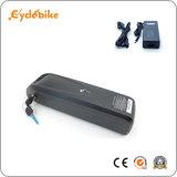 Hailong Style 48V 13Ah batterie Lithium-ion avec port d'USD pour le téléphone