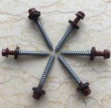 Hex Kopf-Gewindeschneidschraube mit Stahl und Gummiunterlegscheibe-Farben-Zink