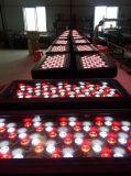 Rasha hohe Leistung 600W imprägniern 192*3W 4in1 RGBW LED Stadt-Farben-helles Stadiums-Licht des Wand-Unterlegscheibe-Licht-DMX512 LED