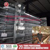 Cage de la couche de poulet de la volaille en Amérique / Afrique du Sud