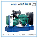 10kw öffnen Ricardo-Dieselgenerator-preiswerten Preis für Bangladesh