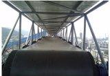Transportband van de Riem van de Korrel van China de Professionele Draagbare