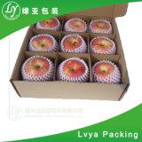 색깔 과일 포장 상자를 인쇄하는 골판지