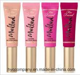 Cores novas do tipo 4 duradouros & batom líquido impermeável Lipgloss líquido 4PCS/Set de Lipgloss