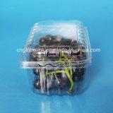 500gプラスチックブドウ包装ボックスフルーツの包装の容器