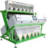 Poroto Mung máquina de clasificación de color RGB de iluminación LED color verdadero