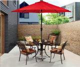 /Rattan al aire libre/silla y vector de la fundición de aluminio de los muebles del hotel del jardín/del patio fijó (HS3173C&HS6116DT)