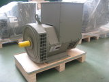 Fabrik-Verkauf 80kVA/64kw schwanzloser Generator-Stamford dreiphasigtyp (JDG224GS)