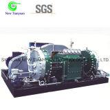 750nm3/H 큰 수용량 가스 격막 압축기