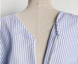 파란 주문 여자 및 백색 줄무늬 똑바른 복장