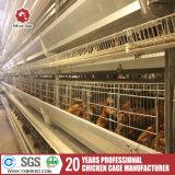 Il pollame mette in gabbia con il sistema automatico di Cleaing del concime