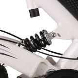 熱い販売法の隠された電池が付いている電気貨物バイク