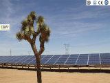 Applicazione centralizzata della centrale elettrica di PV del modulo solare policristallino 260W di Cemp