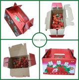 신선한 딸기를 위한 포장 상자