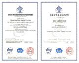 20 años de las experiencias de Changzhou de bolas de acero de la fábrica