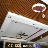 Het binnen Ontworpen Plafond van pvc van de Weerstand van de Brand voor Verkoop