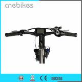 Neumático FAT de 26 pulgadas de nieve Electric Beach Cruiser bicicleta