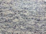 Großhandelsgranit-Fliesen granit-Sankt-Cecelia