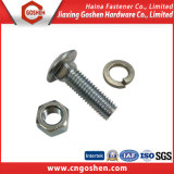 Boulon de fixation en acier inoxydable et écrou / boulon à bout rond DIN603
