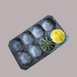 Wegwerf-pp. Plastiktellersegment des einfachen Gebrauch-für Frucht