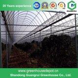Парник PE 200 микронов пластичный для растущий овощей