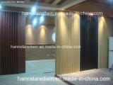 Plafond décoratif imperméable à l'eau et ignifuge d'intérieur de PVC et panneau de mur de PVC