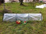 PE 야채를 위한 플라스틱 갱도 온실