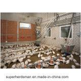 مصنع إمداد تموين شواء [بوولتري فرم قويبمنت] دجاجة يغذّي خطّ تجهيز