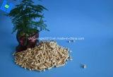 Wc Product-Pine Pet Cat camas de madeira