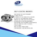 Material Dental Ortodoncia Auto ligar la escuadra del centro de la fabricación de alta calidad