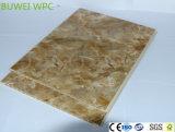 Bois d'intérieur et feuille de mur en plastique du composé WPC avec la taille 600*10mm