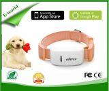 Nueva llegada del animal doméstico Mini perseguidor del GPS para el localizador