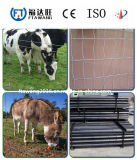 Cerca galvanizada sumergida caliente de la cerca de las ovejas del ganado/del campo de granja