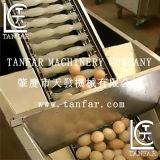 آليّة بيضة تنظيف ويكسر آلة