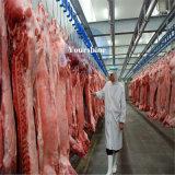 Kundenspezifischer Kaltlagerungs-Raum für Schweinefleisch und Rindfleisch