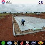 Las aves de corral de acero contienen/casa de pollo con el equipo (PCH-14323)