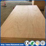 Contre-plaqué commercial en bois de bois de charpente de bois de construction de panneau de mur pour des meubles, décoration