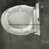 Неэлектронная крышка места туалета Bidet Ts-1001 для туалета круглой формы