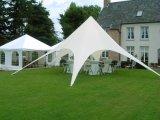 屋外党イベント展覧会のための13mアルミニウムオックスフォード赤いBullの星形のテント